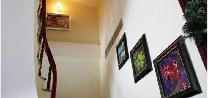 Khách sạn Đà Lạt Xưa và Nay giá rẻ gần chợ -11