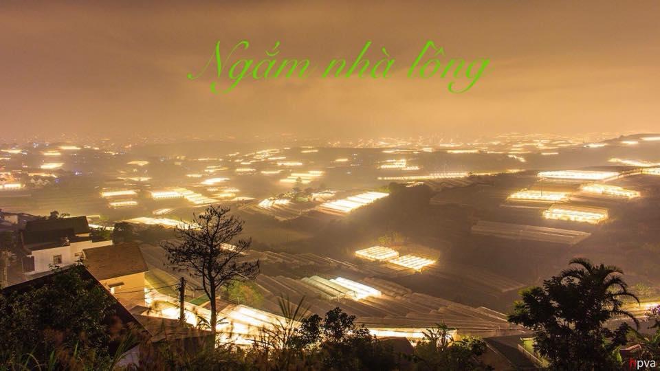 Thành phố Đà Lạt - 7 Trải nghiệm Đà Lạt về đêm tuyệt vời nhất dành cho bạn - datphongdalat.vn