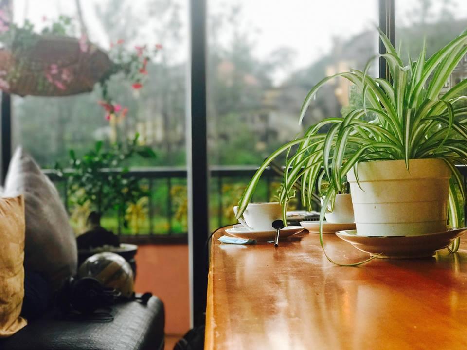 quán cà phê nhạc Trịnh Đà Lạt Memory cafe Acoustic Da Lat -03