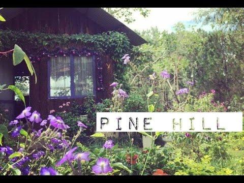 Pine Hill villa homestay Đà Lạt