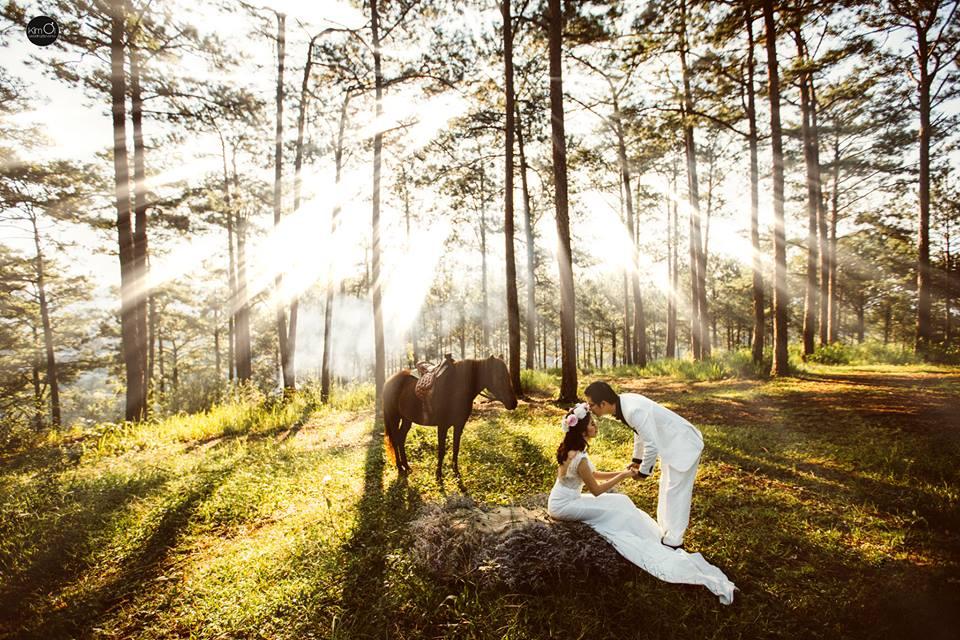 Đà Lạt tháng 12 tuyệt đẹp với vô vàng các điểm chụp hình cưới tuyệt đẹp