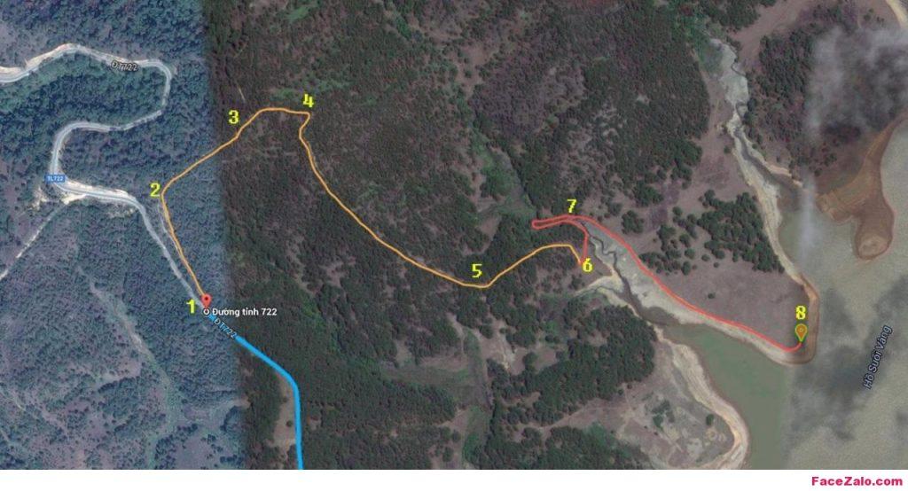 Đường đi cây thông cô đơn Đà Lạt (Nguồn: faceZalo.com)
