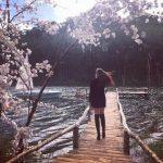 Phim trường Serect garden Đà Lạt