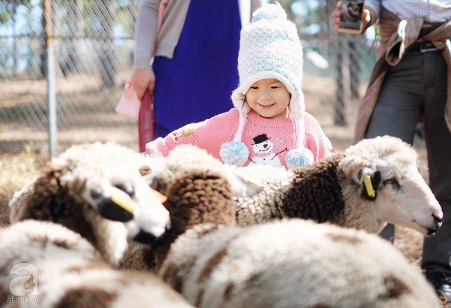sở thú zoodoo Đà Lạt làm cho em nhỏ mê mẩn
