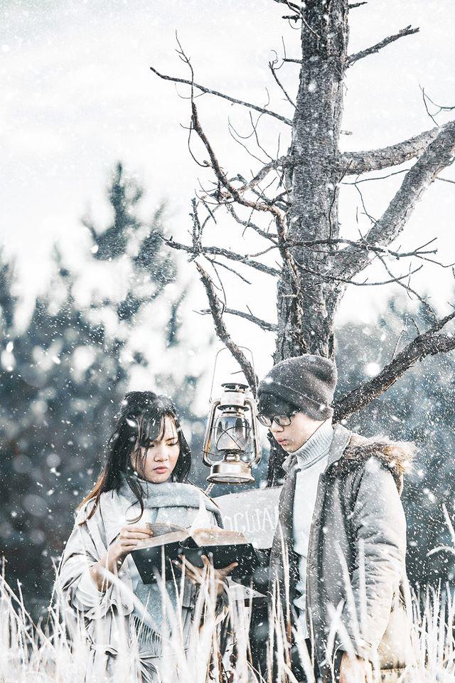 Đà Lạt có tuyết rơi -cánh đồng cỏ tuyết Đà Lạt - datphongdalat.vn -5