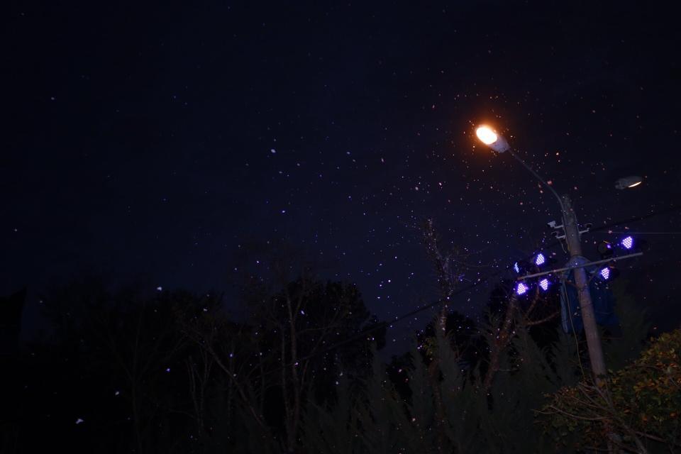 Đà Lạt có tuyết rơi - datphongdalat.vn -2