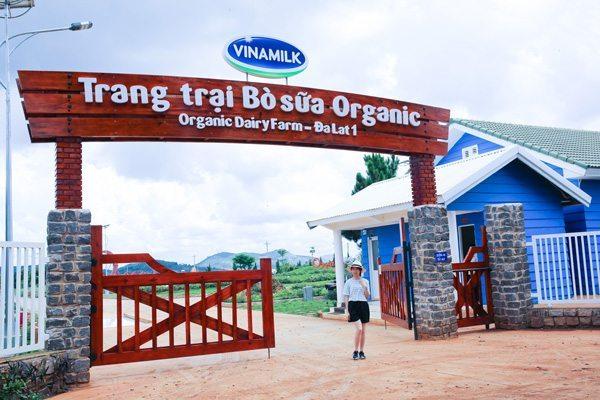 Nông trường bò sữa Vinamilk-Organic-Milk-Farm-Đà Lạt -datphongdalat.vn-4