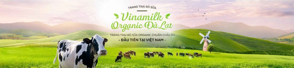 Nông trường bò sữa Vinamilk-Organic-Milk-Farm-datphongdalat.vn-6