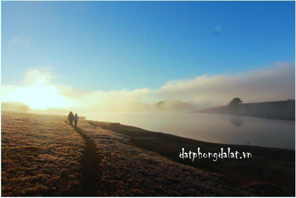 du lịch đà lạt tháng 1 có gì đẹp, đi đâu vui -datphongdalat.vn - 02