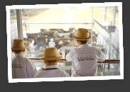 Chuyến tham quan Vinamilk Organic Farm Đà Lạt -datphongdalat.vn-02