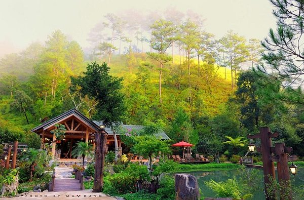 Ma rừng lữ quán - dia diem du lich da lat - datphongdalat.vn-3
