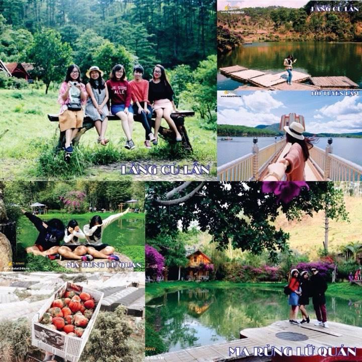 Tour Ma Rừng lữ quán - Làng Cù Lần - Đường hầm Đất Sét - Tour Đà Lạt 1 ngày giá rẻ - datphongdalat.vn-01