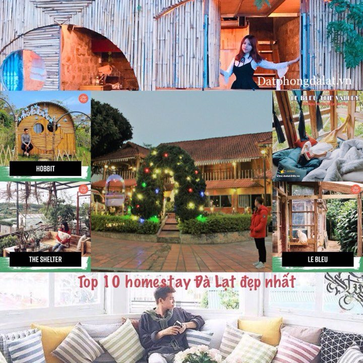 Homestay Đà Lạt đẹp nhất -homestay da lat dep nhat - datphongdalat.vn-01