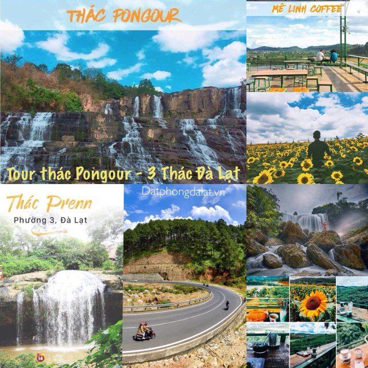 Tour thac Pongour Da Lat - Tour Da Lat 1 ngay gia re - datphongdalat.vn-4