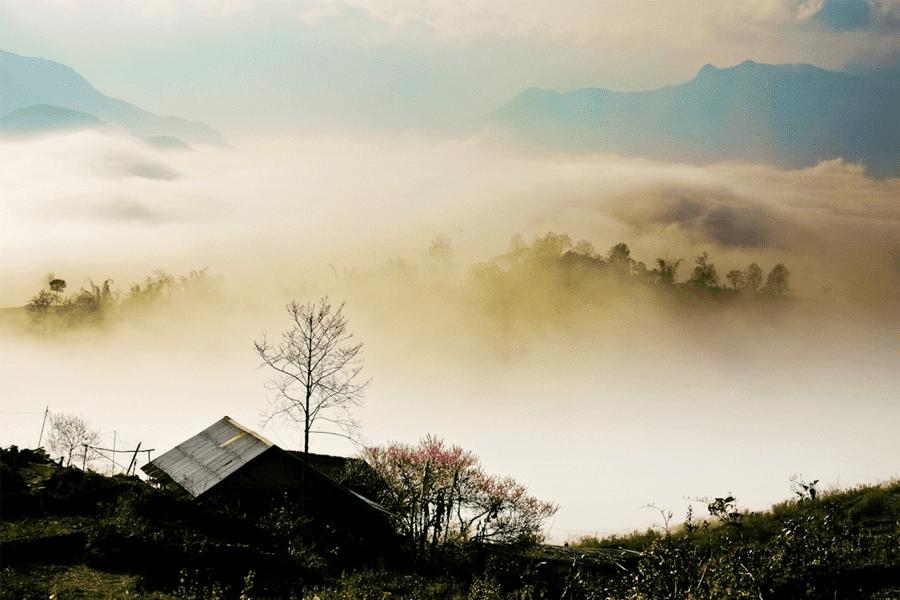 du lịch Đà Lạt tự túc