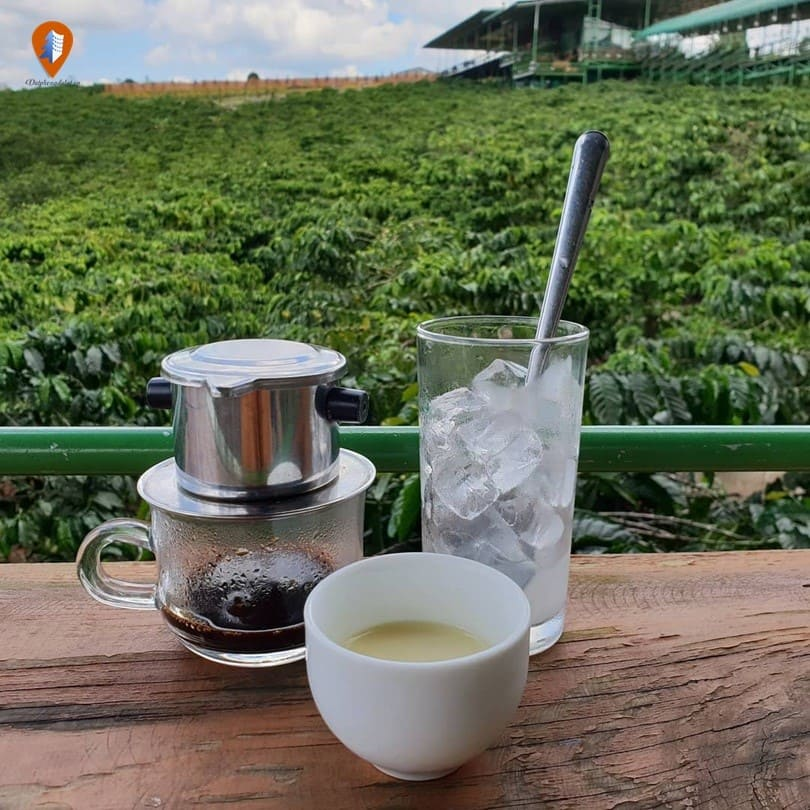 quán cà phê đẹp ở Đà Lạt