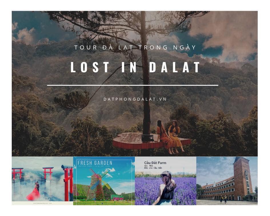 Tour Lost in Da Lat - Tour Đà Lạt 1 ngày 2019 - TA Travel