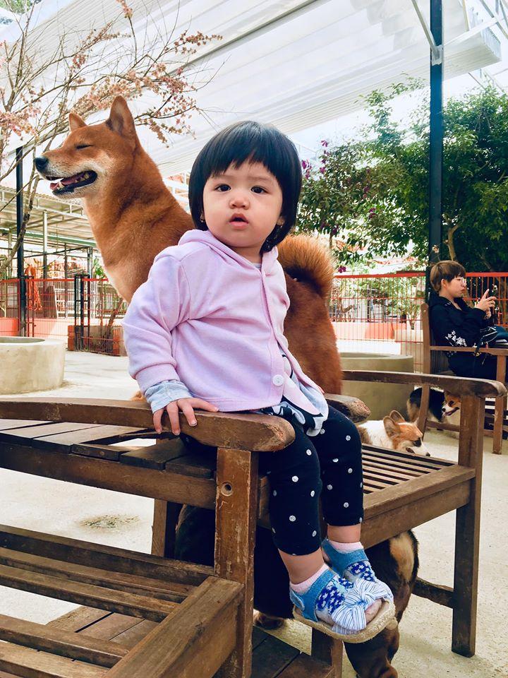 trang trại chó Đà Lạt Puppy farm - datphongdalat.vn-09