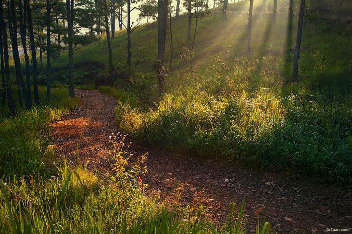 vườn quốc gia Bidoup Núi Bà