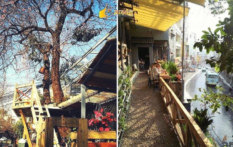 Top 10 quán cafe Đà Lạt đẹp nhất 2021-32