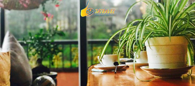 Top 7 quán cafe đẹp acoustic Đà Lạt 2021