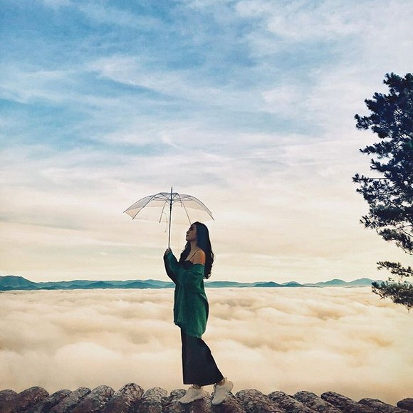 Thiên đường săn mây đồi chè câu đất Đà Lạt
