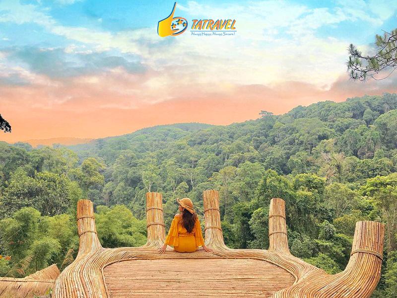 Du lịch Đà Lạt tháng 6 Hoa Sơn Điền Trang