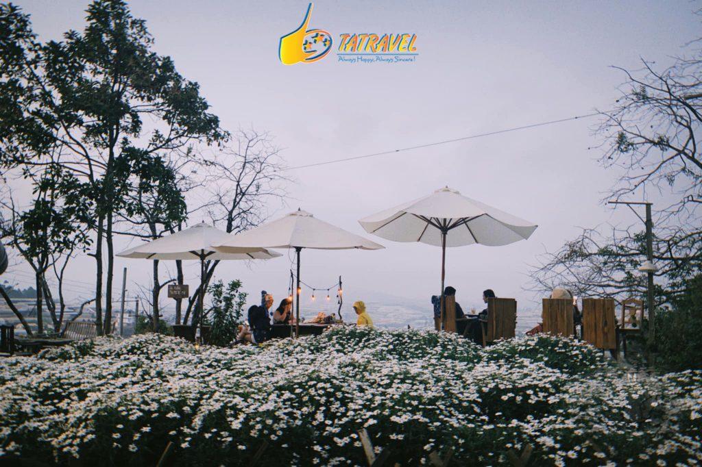 Quán cafe Túi Mơ To Đà Lạt - Toplist 10 quán cafe đẹp nhất Đà Lạt