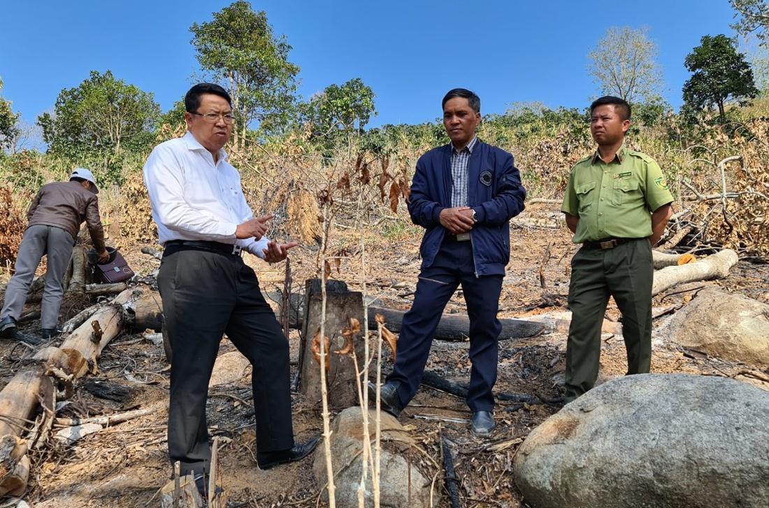 Lâm Đồng - Đà Lạt xử lý xây dựng trên đất lâm nghiệp