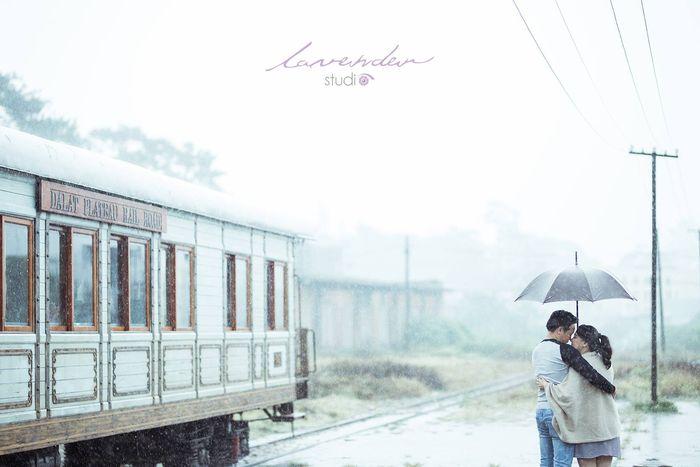 Những cặp đồi chuoj cho mình những bức hình kỉ niệm dưới trời mưa Đà Lạt tháng 7