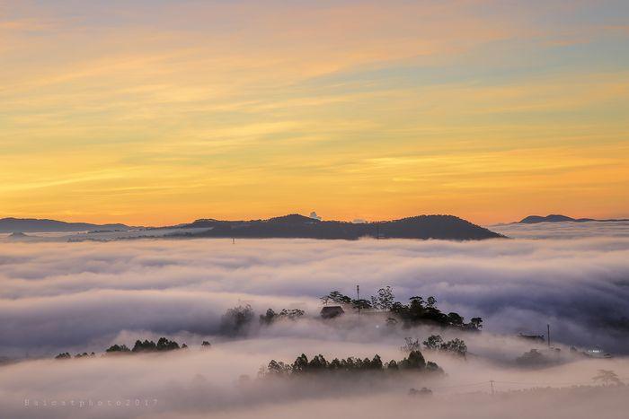 Kinh nghiệm săn mây du lịch Đà lạt tháng 7