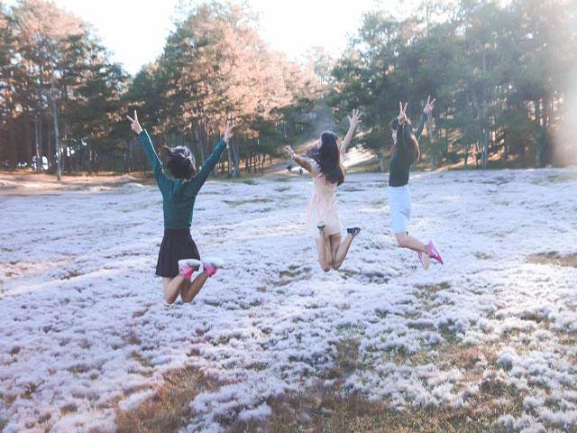 Đồi cỏ hồng - Điểm du lịch hấp dẫn trên cung đường Đà Lạt Suối Vàng