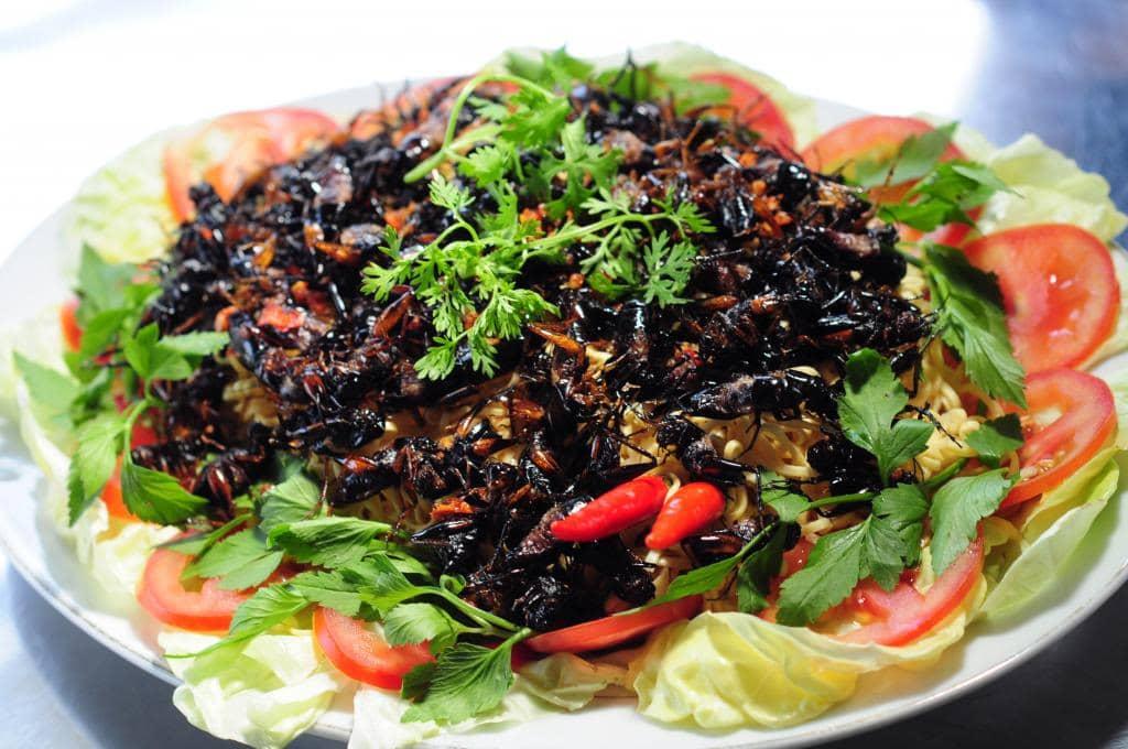 Món ăn ngon đặc sản từ dế