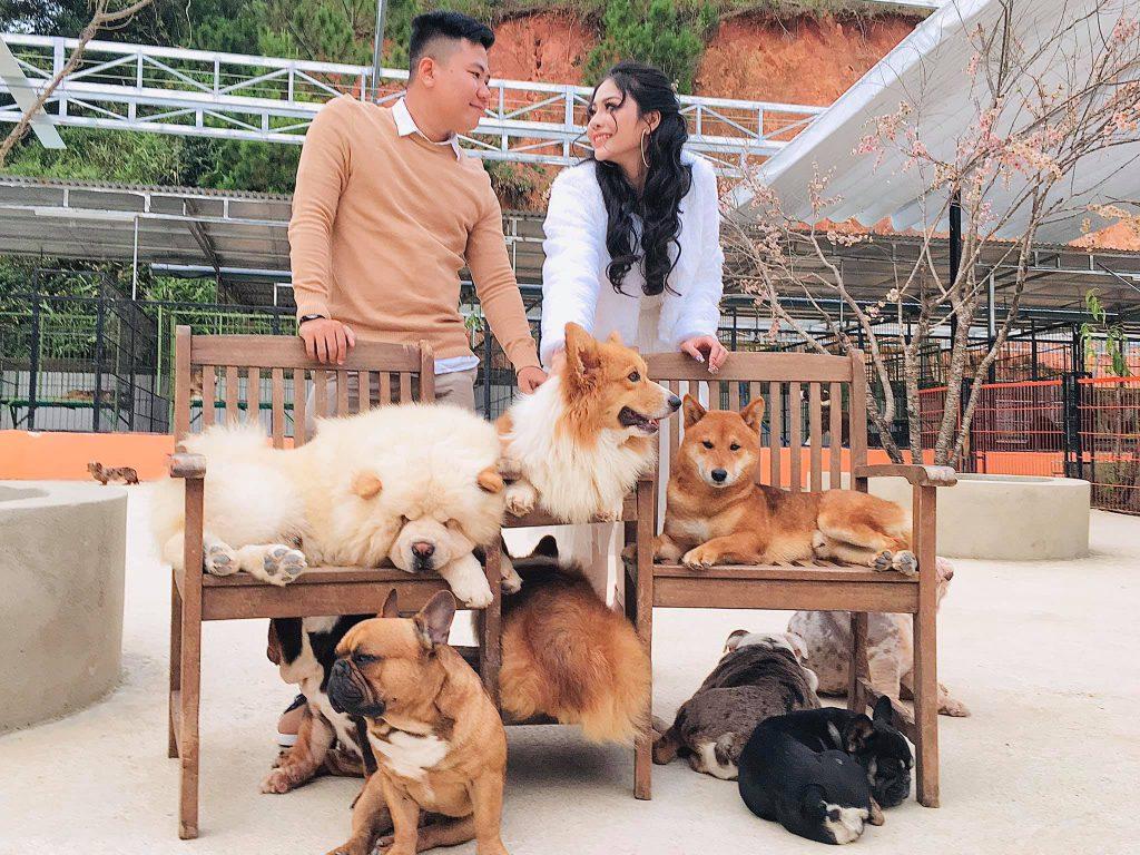 Puppy Farm điểm dừng chân cho mọi du khách